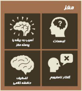 اثرات اعتیاد بر روی مغز