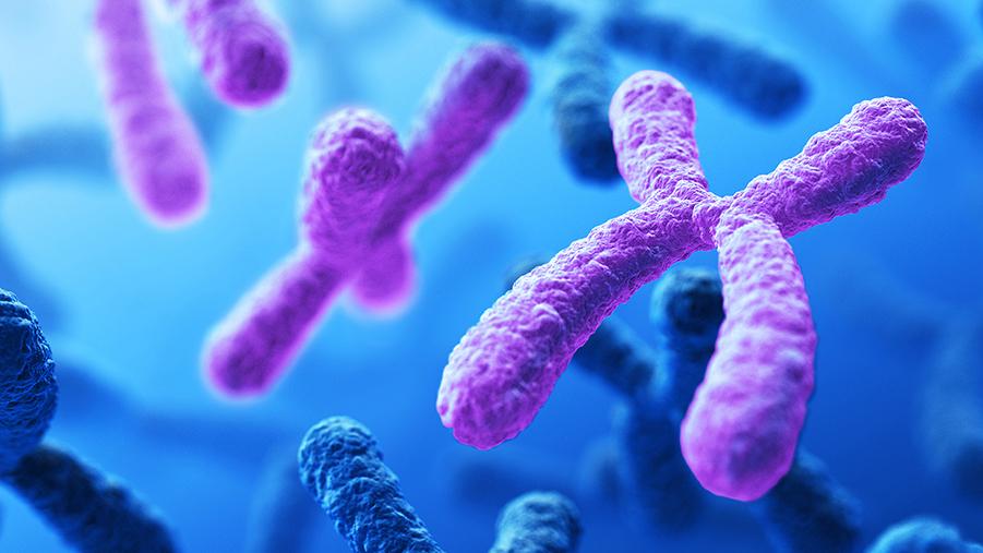 تاثیر ژنتیک در اعتیاد
