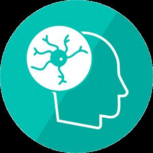 بخش علوم اعصاب