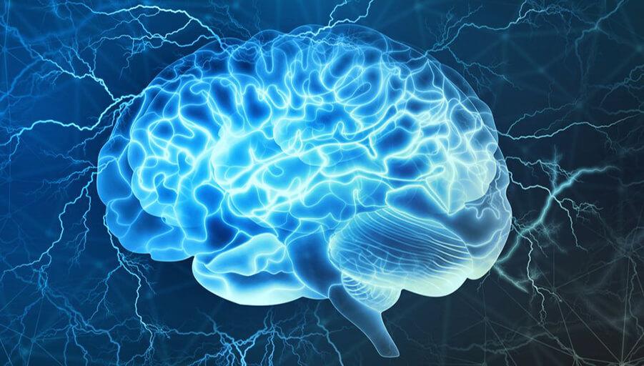 تاثیر کوکائین بر مغز